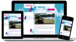 de balanscoach voor vrouwen website
